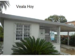 Olivares, Nitida, Veala Hoy
