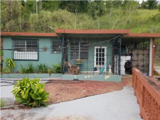 Bo. Mogote C/Evaristo Hernandez #502, Cayey