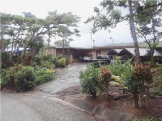 Casa16 CUERDAS Jayuya/Utuado RIO parc CULTIVADA