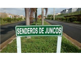 NEGOCIABLE - URB SENDEROS DE JUNCOS