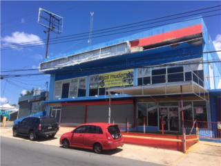 CARR 167, Sector La Aldea, $403K