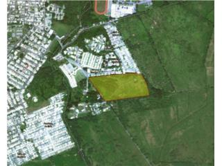 Naguabo 18 Cuerdas a medio Km del Pueblo Rebajada