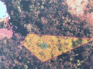Solar de 1,451.03 m.c. en San Germán