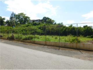 Bo. Puente / Bo. Membrillo, Carr 2 KM 92.5
