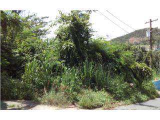Bo. Mayaguez Arriba, Carr 105 KM 1 int. Lote