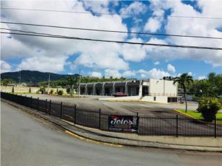 Centro Comercial - Cayey  + 100 estacionamientos