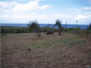 OCEAN VIEW LOT in Vieques with TITLE