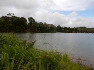 20 cuerdas a la oriila del Lago de Cidra