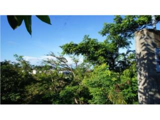 Rincon Pueblo Lot with Ocean Views