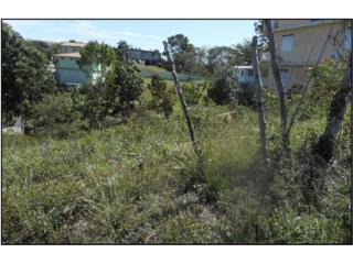 Lot in Barrio Puntas, Rincon