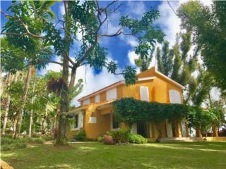Bella Casa en Finca 12 Cuerdas / Reserva El Yunque