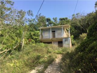 Bo. Rio Prieto Sector La Montaña  3-1