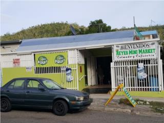 Urb Las Delicias, Ponce-Oportunidad inversion