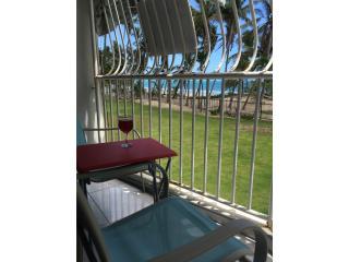 Castillo del Mar- ocean view $199k parkg