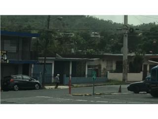BO. RIO CAÑAS, CARR. #1, CAGUAS