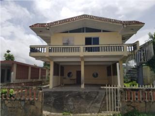 Bo. Ceiba Norte, Juncos