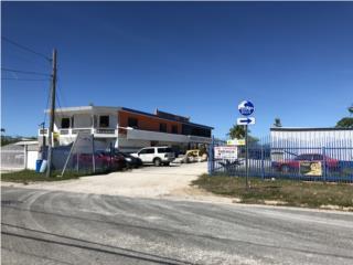 Bo. Jauca Calle A #161