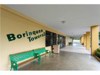 Listo para mudarse en Borinquen Towers II