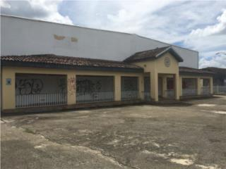 Buena Vista (7) 205303.00 P/C Comercial