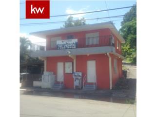 UNIBON, LOCAL COMERCIAL EN MOROVIS, PUERTO RICO
