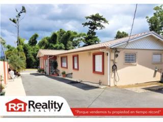 Bo. Cañaboncito, Sector La Rambla, Caguas