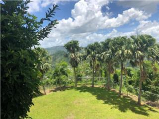 Espaciosa Casa con Vista Perfecta Guaynabo