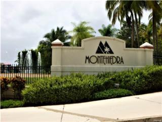 MONTEHIEDRA