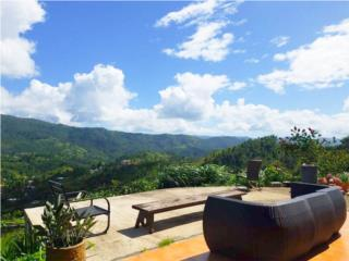 Guavate Home with Panoramic Reserve View