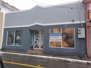 Calle Luis M. Rivera #21, Salinas