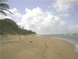 35 Beachfront Acres next to Shacks Beach