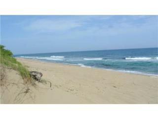 17 Acres Beachfront Isabela