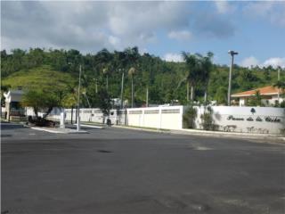 Paseo de la Ceiba - Control Acceso!!!