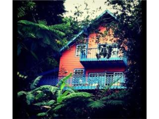 Charming Chalet in the Rainforest