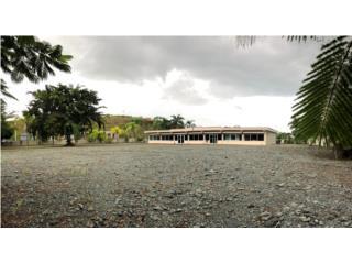 Barrio Culebrinas Carr 424 KM 1.2