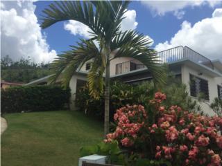 PALMAS DEL TURABO  hermosa Mansión con piscina!!