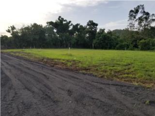 H. EL Paraiso.  1,181 m. Llanos. $36,000