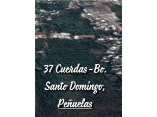 37cdas-residenciales-Peñuelas