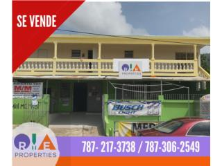 Bo. Olimpo, Guayama - Residencial/Comercial