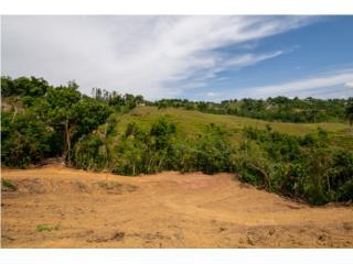 Bo. Dos Bocas Solar #2-NUEVO PRECIO !!