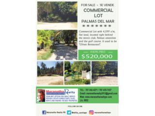 Commercial Lot Palmas del Mar