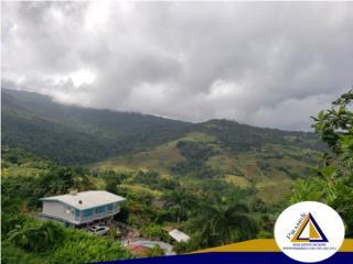 Great property in Guzman Arriba, Rio Grande