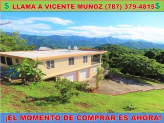 VIVA EN EL CAMPO-COLLORES * KM.HM 7.0 CARR 371 *