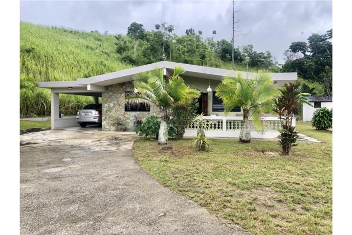 Llanos Puerto Rico