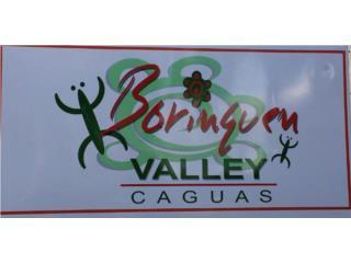 Urb. Borinquen Valley 5h/1b