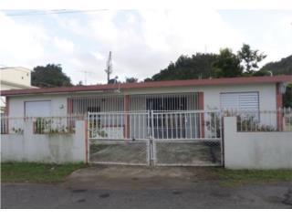 Campanillas Puerto Rico