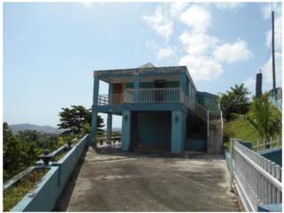 Tejas Puerto Rico