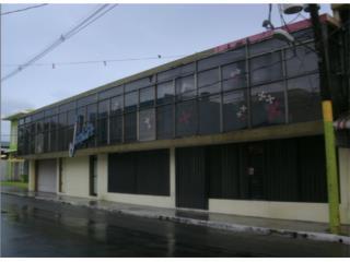 Bo. Pueblo Calle PALMER  Canovanas