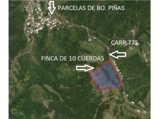 FINCA DE 10 CDAS FRENTE A PRINCIPAL CARR 775
