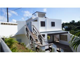 Income Property in Bo. Río Grande, Rincón
