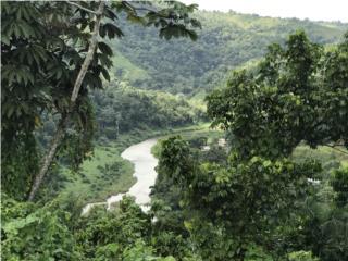 Bo Rio Arriba